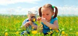 Формирование ответственности у детей и подростков|Путь к зрелости
